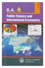 Public Finance and Inernational Economics